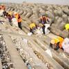 【中国情報】千トンのごみが長江に流れ、百人近くで清掃する[怒]