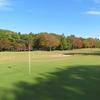 ゴルフ日和です
