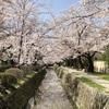 SSK (SunnySide of Kyoto)(+735/1100)