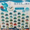 海洋生物大集合