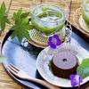 胆石持ちが食事を楽しむために取り入れた低脂質な食品達