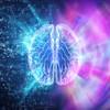 【脳機能】脳機能を劇的にアップさせる方法まとめ(脳機能編完結編)