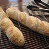 基本のバゲット修行、オーブン上段で底割れ回避!ギョーザのタネの残りとナンプラーで、簡単アジアンチャーハン。ズッキーニ、初生り、成長中。入梅。