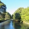 心癒される水辺を散策!レトロな雰囲気漂う【酒津公園】@倉敷