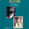 馬の蹄 カラーアトラス アニマル・メディア社