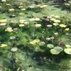 冬のモネの池とレトロミュージアム