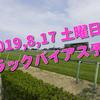 2019,8,17 土曜日 トラックバイアス予想 (新潟競馬場、小倉競馬場、札幌競馬場)