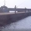 三重県波切(なきり)港 アオリイカ釣り