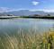 蘇鉄池(和歌山県紀の川)