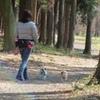 つくばお散歩トレーニング 2015.02.15(その3)