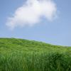 Windows XPの壁紙で見た「あの草原」のような風景が日本にもあった?【極上のあか牛丼】