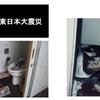 """【災害備蓄の盲点】トイレが使えなくなった東京は""""汚物""""地獄になる"""