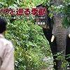 ゾウと巡る季節
