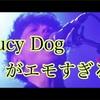 Saucy Dogがエモエモの実を食べている件。名曲「いつか」など紹介。