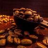 【猫の糞から高級コーヒー!?】幻の味『コピ・ルアク』はジャコウネコが生んだ奇跡のコーヒー