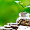 個別株への集中投資が大きなリターンをもたらす