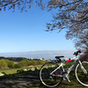 東京・都心の桜サイクリングスポット「桜坂~等々力渓谷~多摩川」