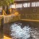 「ドーミーイン富山」は広々とした内湯と外気浴が良かった。朝食には「ます寿司」「氷見うどん」「ほたるいか」。