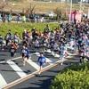 【レポ】豊田マラソン