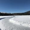 冬の湖では。。。 #22