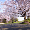 春のユルポタ祭り-荒川CR編-