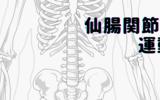 仙腸関節の運動