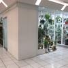 丸ビルに観葉植物が売っている!!