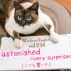 【週末英語#258】「surprised」よりさらに驚いた時は「astonished」