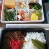 2月のハワイ新婚旅行6日目~デルタ航空でホノルルから成田まで(服装、食事)~