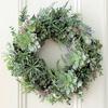 ≪本店1階≫ グリーンで彩るクリスマス★WINTER PLANTS~ウィンタープランツ~★