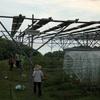 【ソーラーシェアリング】農業が先か太陽光発電が先か