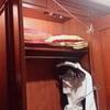 【リゾバ】寮での洗濯物の干し方