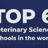 世界の獣医大学トップ6はここだ!!