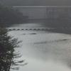 6月の振り返り・・・滝畑ダムへ行ったり、暗峠へ行ったり。猫カフェに行ったり。。大阪マラソン、神戸マラソン抽選発表・・・