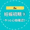 【8w/妊娠初期③】胎芽・心拍を確認!排卵が遅れた可能性?