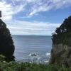 早朝の江ノ島で、たくさんの命と共に。