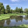 【夏・写真】大阪さんぽ、鶴見緑地(空と雲編)