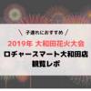 【2019年】大和田花火大会 「ロヂャースマート大和田店」での観覧レポ
