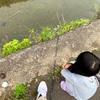 子供と川釣り🤗 ファミリーフィッシング!