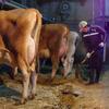 安心を提供するために「生産者の顔の見える牛乳」