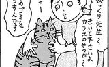 【ネコに勝てない】飼ってない猫 その43「ご近所自警団」【エッセイまんが】