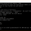 AWS F1インスタンス上のFireSimでBOOMコアをシミュレーションする試行(4. F1インスタンスの立ち上げとLinuxのブート)