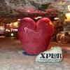 XPLOR エクスプロール