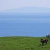 なんで「函館海峡」ではなく「津軽海峡」っていうの?