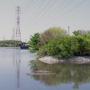大沼親水公園の春 3