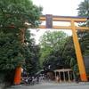 川越氷川神社の「縁結び風鈴」で「風鈴回路」を楽しんできました♪