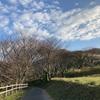 平尾台を歩く−2020.11.29(sun)−