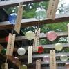 氷川神社の縁結び風鈴はインスタ映え、カップル多し