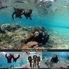 水面と水中の海体験!