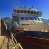 【北海道旅行】世界遺産知床の旅②〜観光船おーろらで知床旅情を聴きながら
